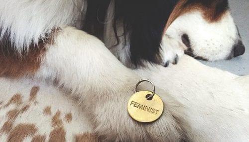 Khắc laser vòng cổ cho chó giá rẻ cực chất tại Hà Nội