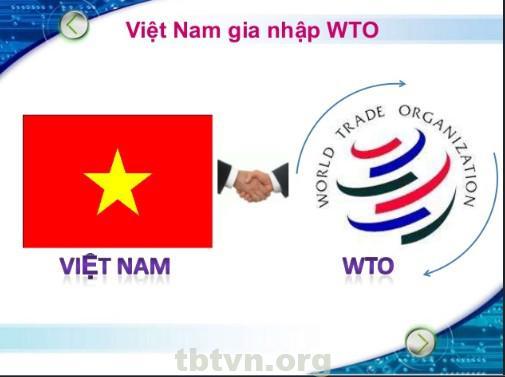 Điều kiện phát triển khi Việt Nam gia nhập WTO
