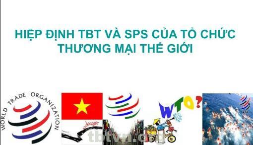 tbt va cac to chuc thuong mai the gioi